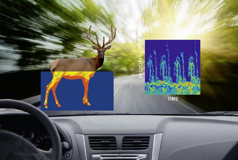 用于智能道路雷达检测野生动物的数字化仪